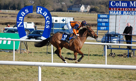 SHAMROCK Mon: Listed races at Naas