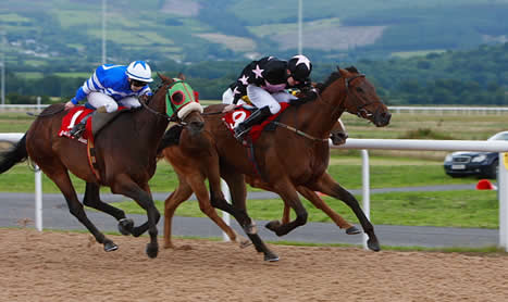 SHAMROCK Fri: Dundalk NAP