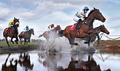 SHAMROCK Weds: Punchestown Special
