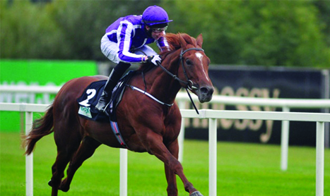 Australia set to 'prove himself' in the 2,000 Guineas