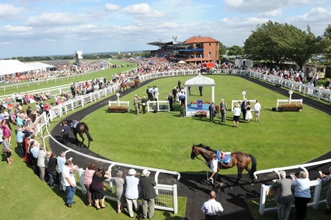 DAQMAN Tues: Busatto at Beverley
