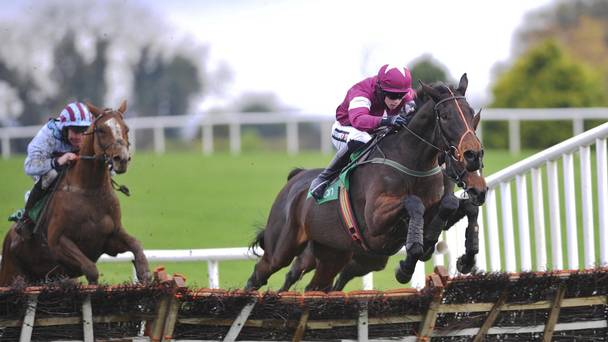 SHAMROCK Mon: Mixed fortunes at Navan