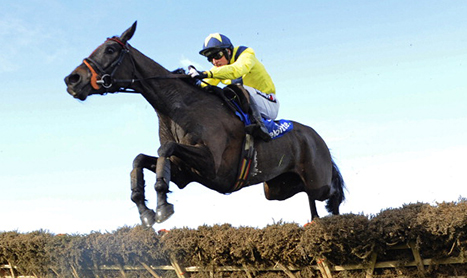 SHAMROCK Tues: Quality Jumping at Fairyhouse