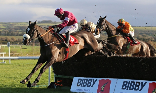 SHAMROCK Thurs: Fascinating Feature at Thurles