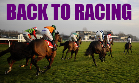 MULTIMAN Tues: Lingfield/Redcar Double