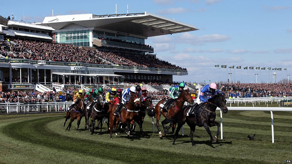 SHAMROCK Thurs: Fire to prove himself today