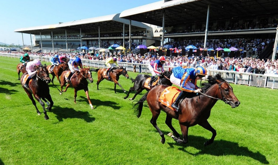 SHAMROCK Sat: Curragh Group Races