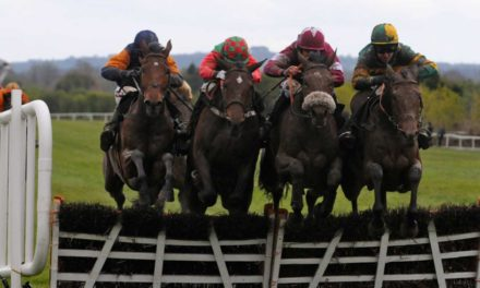 SHAMROCK Thurs: Punchestown NAP