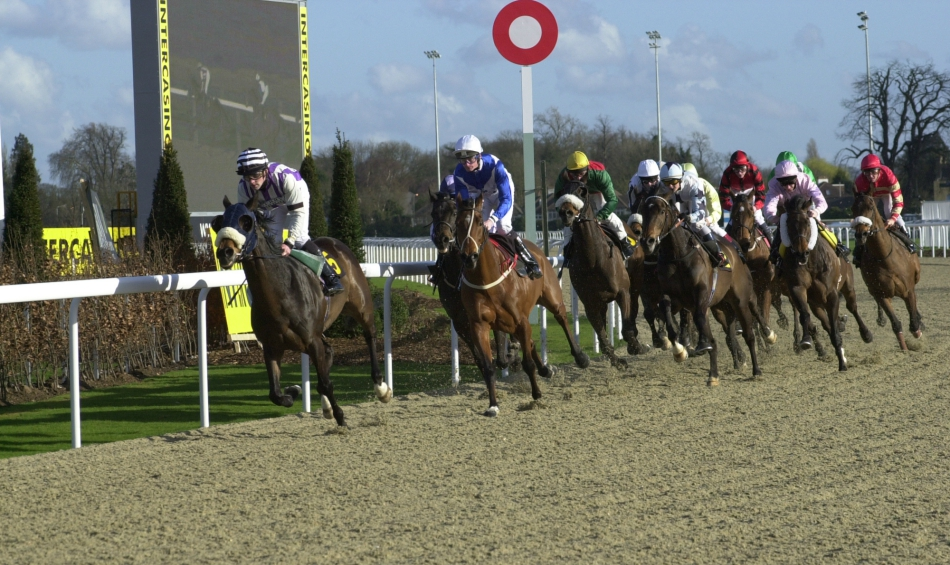 MULTIMAN Tues: Kempton DOUBLE