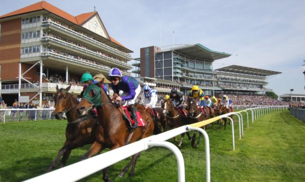 DAQMAN Sat: York SUPERNAP
