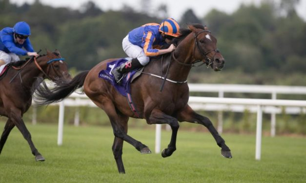 SHAMROCK Weds: Ascot boost for St George
