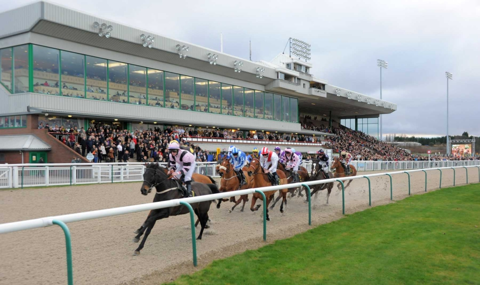BETDAQ's stalls partnership with Arena Racing Company