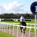 PROFORM Thurs: Wetherby NAP