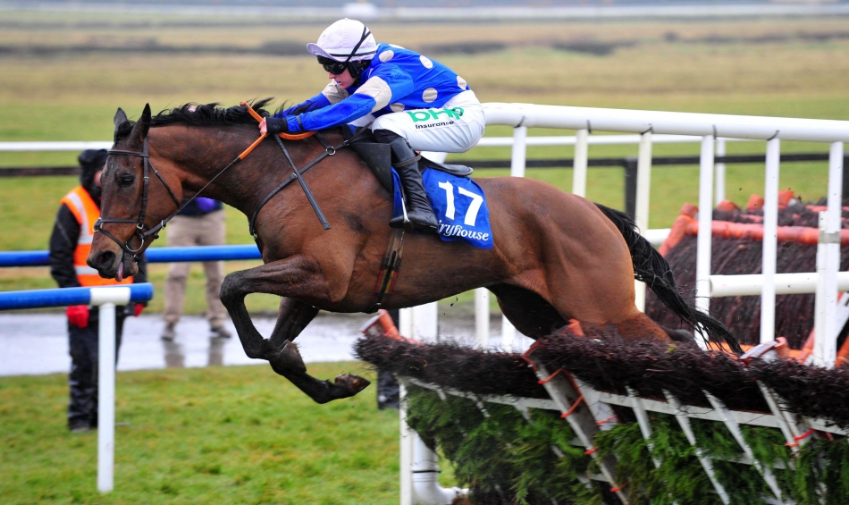 PROFORM Sun: Fairyhouse NAP