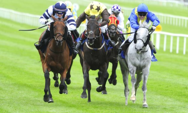 SHAMROCK Tues: Tipperary NAP