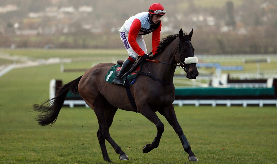 Three Most Memorable Cheltenham Stayer Hurdles In The Last 10 Years