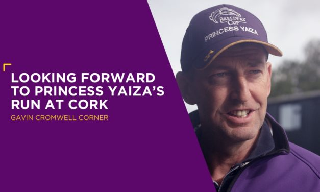 GAVIN CROMWELL: Looking Forward To Princess Yaiza's Run At Cork