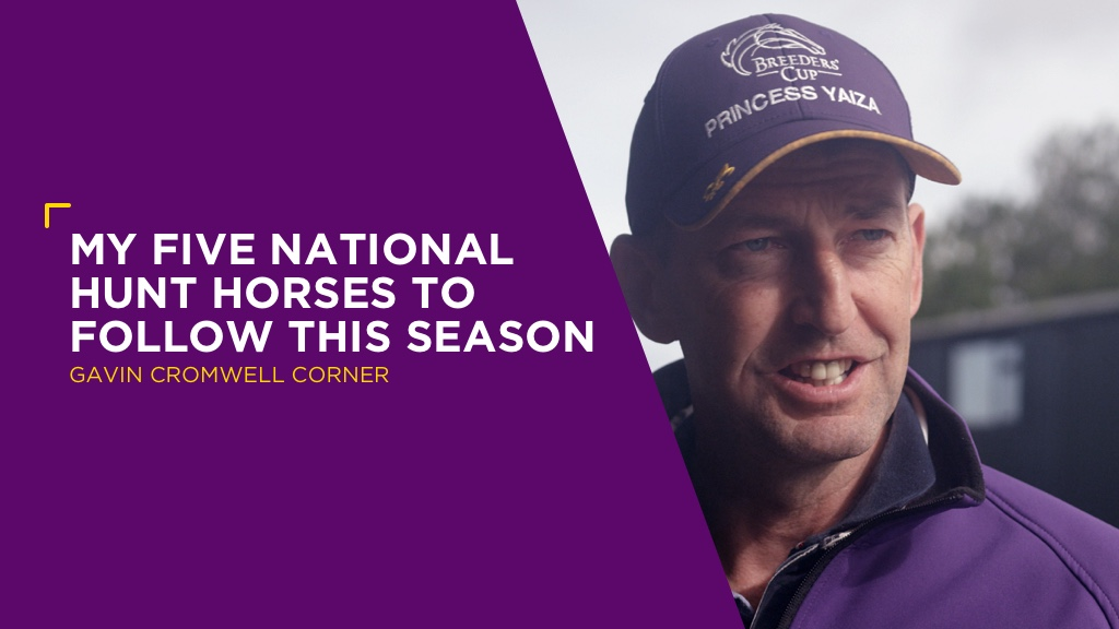 GAVIN CROMWELL: My Five National Hunt Horses to follow This Season