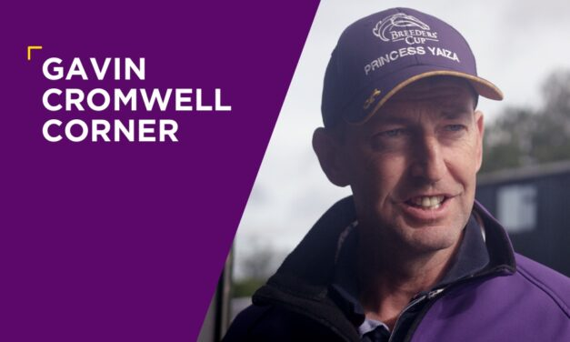 GAVIN CROMWELL: Quick Suzy On Target To Be First Royal Ascot Runner