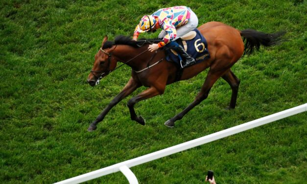 BIG RACE PREVIEW: Desmond Stakes