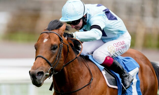 BIG RACE PREVIEW: Haydock Sprint Cup Stakes