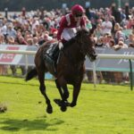 BIG RACE PREVIEW: Qipco Champion Stakes